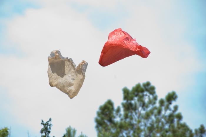 Ramin Bahrani – Plastic Bag, 2009